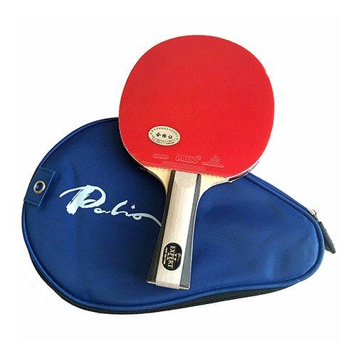 Palio Expert 2 paddle